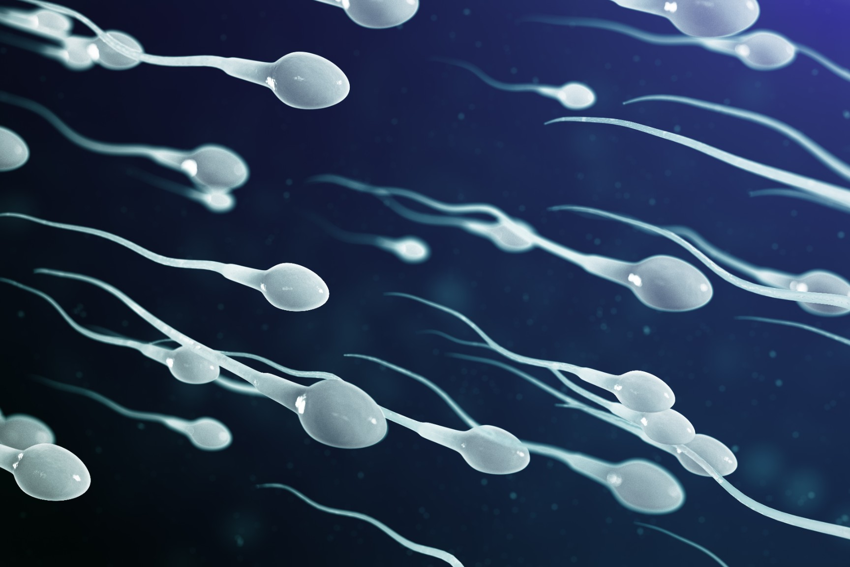 How to have a better fertility and sperm health?